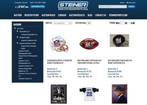 steiner1-28-15