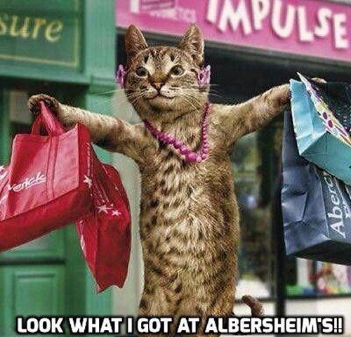 albersheims6-11-15