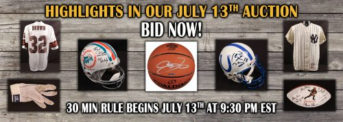 sigauctions7-10-17